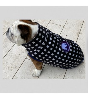 OLYMPIA DELLE TOFANE neoprene for English and French bulldog